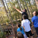 Roadschool 101 at the Calusa Nature Center