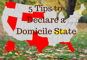 5 Tips to Declare a Domicile State